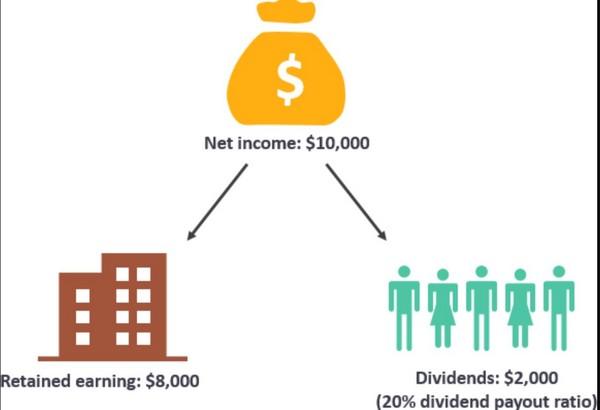 dividendy5.jpg