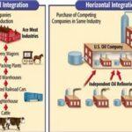 Вертикально интегрированная компания — что это и как работает